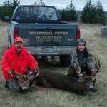 Deer 2 030