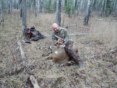 Deer 2 038