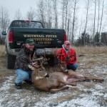 Deer 2 041